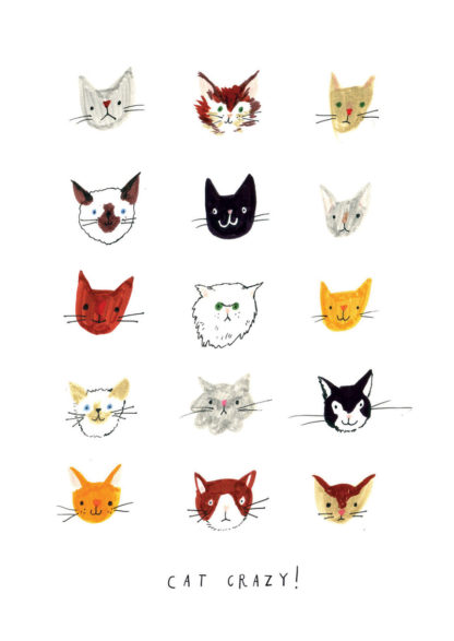 nina cosford cat crazy